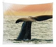 Humpback Whale Tapestry