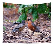 Hungry Baby Robin Tapestry