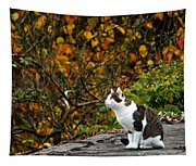 Hungry Cat Tapestry