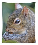 Hungry Squirrel Tapestry