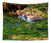 Hungry Willet Tapestry