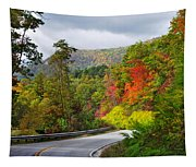 Hwy 281 In The Fall  Tapestry