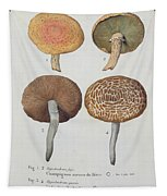 Hypodendrums Fagi And Queris Tapestry