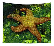 I Found A Starfish Tapestry