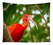 Ibis Tapestry