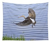 Ibis Incoming Tapestry