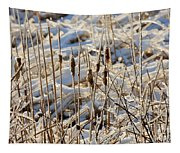 Ice Coated Bullrushes Tapestry