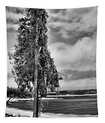Ice Coated Tree Tapestry