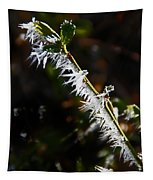 Ice Crystals In Morning Sun Tapestry