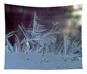 Ice Crystals Of Winter Tapestry