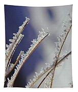 Ice Crystals On Fireweed Fairbanks  Alaska By Pat Hathaway 1969 Tapestry