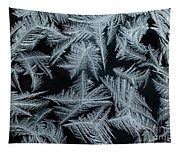 Ice-flowers Frost Pattern Tracery On Frost Window Tapestry
