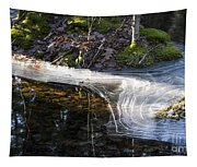 Ice In Creek Tapestry