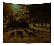 Ice Storm Night Tapestry