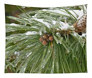 Iced Over Pine Cones Tapestry