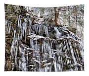 Icicles On Forbidden Drive Tapestry