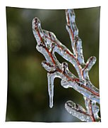 Icy Branch-7498 Tapestry