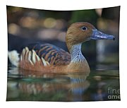 Img_8931 Fulvous Whistling Duck Tapestry