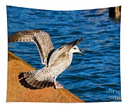 Immature Herring Gull At The Harbour Tapestry