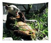 In Need Of More Sleep. Er Shun Giant Panda Series. Toronto Zoo Tapestry