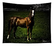 In The Corral 1 - Featured In Comfortable Art And Wildlife Groups Tapestry