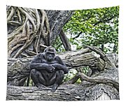 In The Treetop Tapestry