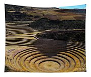 Inca Crop Circles At Moray Tapestry