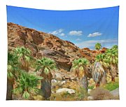 Indian Canyons View In Palm Springs Tapestry