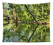 Indiana Reflections Tapestry