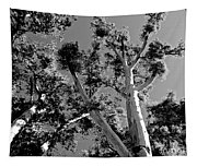 Infrared Tree Tapestry