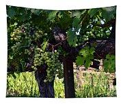 Inglenook Vineyard -11 Tapestry