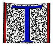 Initial 't', C1600 Tapestry