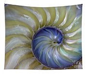 Inside A Nautilus Shell Tapestry