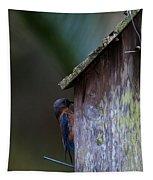 Installing Bedding Tapestry