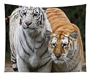 Intent Tigers Tapestry