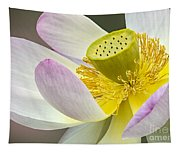 Intimate Sacred Lotus Bloom Tapestry