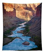 Into The Canyon Tapestry