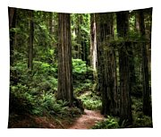 Into The Magical Forest Tapestry