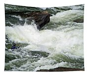 Into The Rapids Tapestry