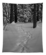 Into The Woods Pisgah Forest Black And White Tapestry