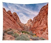 Into Valley Of Fire Tapestry