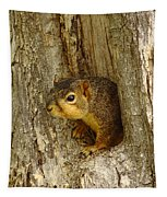 iPhone Squirrel In A Hole Tapestry