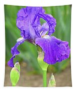 Iridescent Flower Tapestry