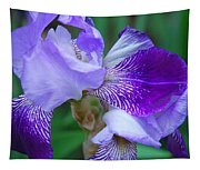 Iris 30 Tapestry