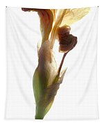 Iris Yellow Tapestry