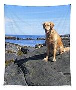 Island Dog Tapestry