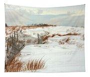 Island Snow Tapestry