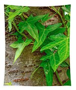 Ivy Wrapped Tree Trunk Tapestry