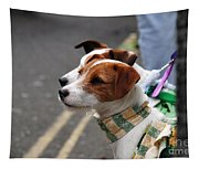 Jack Russell Terriers Tapestry
