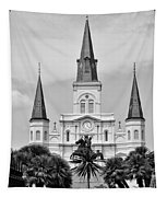 Jackson Square In Black And White Tapestry